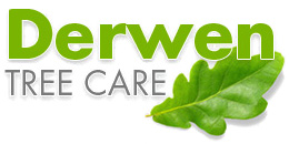 Derwen Tree Care
